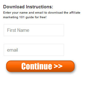 Affiliate Marketing Plug