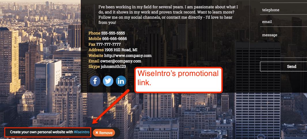 promotional - wiseintro