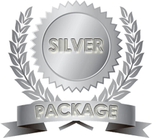 silver package monetizepros sponsored article logo - guest post on monetizepros