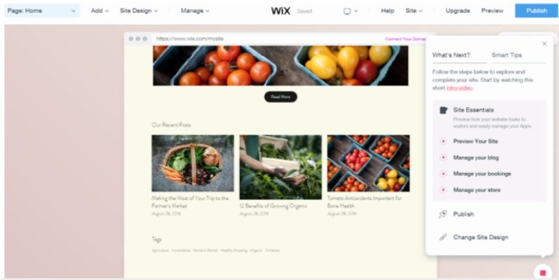 Wix ADI Review - make a website fast - wix
