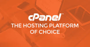 hosting24 review-cPanel